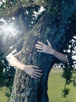 La Energia de la Naturaleza