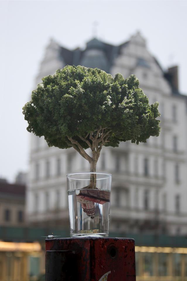 Sensibilidad Frente al Cambio Climatico