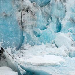 proyecto residencia artistica en la antartida