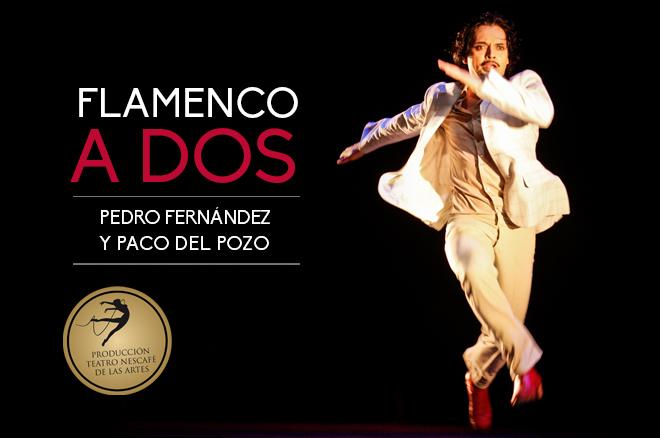 660-x-438_flamenco_a_dos-1