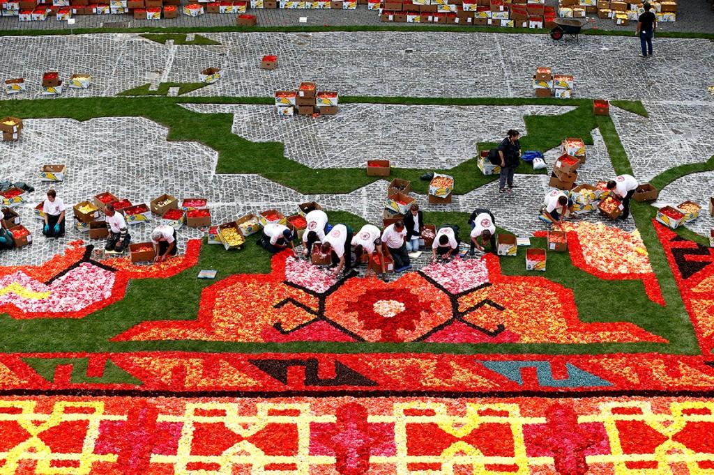brussels-grand-place-flower-carpet-2014 (1)
