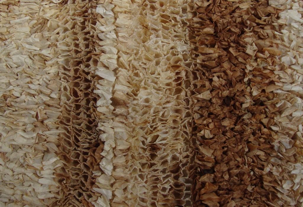 denise blanchard (1)