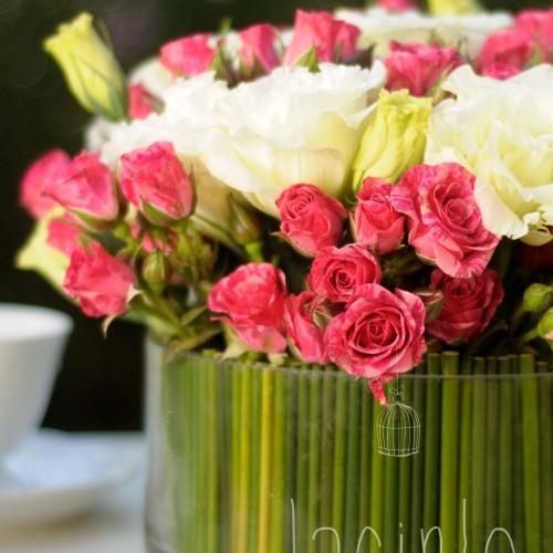 jacinto flores (2)
