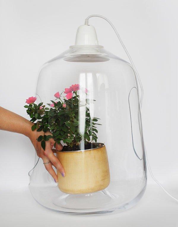 Una Lámpara para plantas