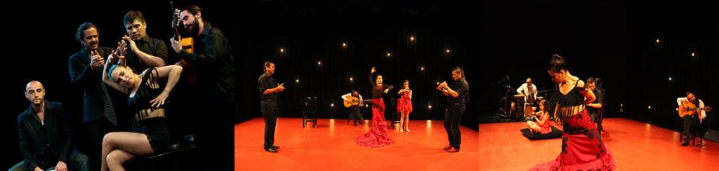 Gala Flamenca en La Reina