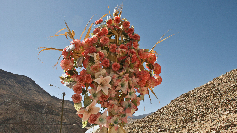 Textiles & Flores