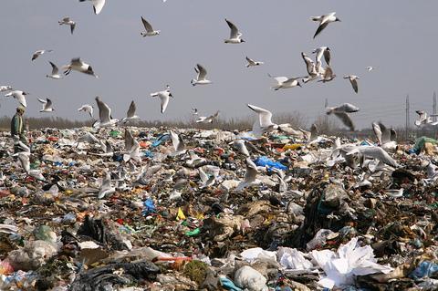 A Suecia se le acabó la basura para reciclar y ahora la importa
