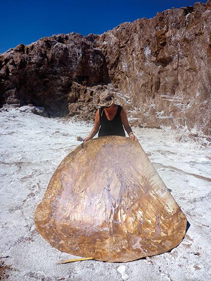 Atacama: cielo y Tierra