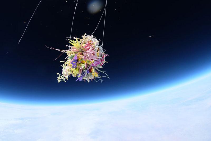 azuma-makoto-sends-flower-bouquet-into-space-1