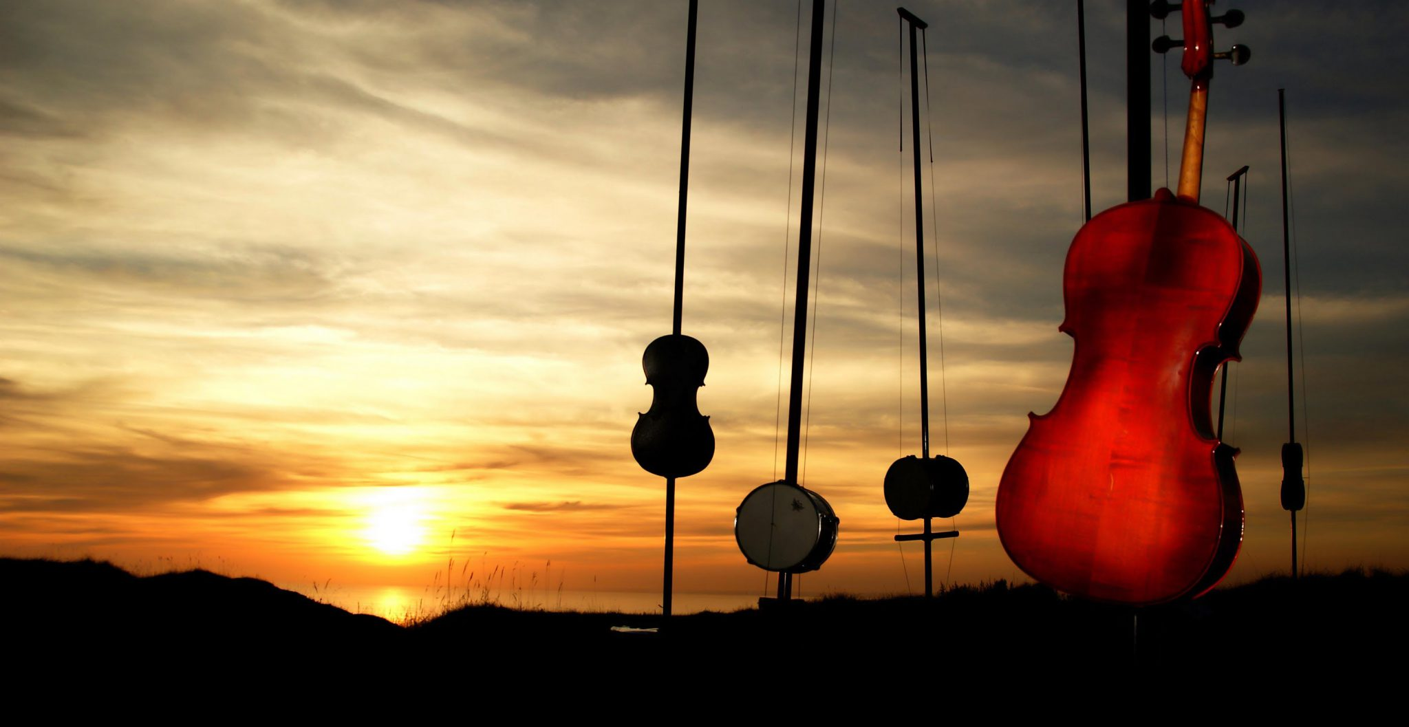 Harmonic Fields «La Orquesta del viento»