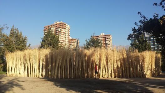«Bosque de Mimbre» en el Parque Araucano