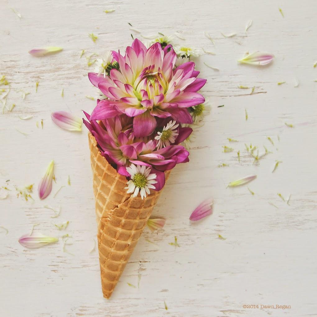 Dawn Regan-Dahlia Ice Cream