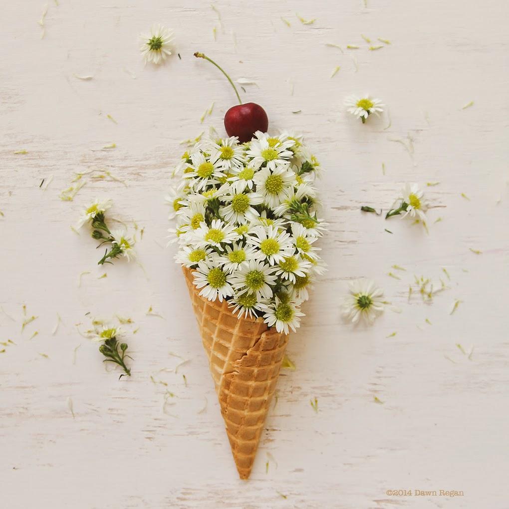 Dawn Regan-Daisy Ice Cream
