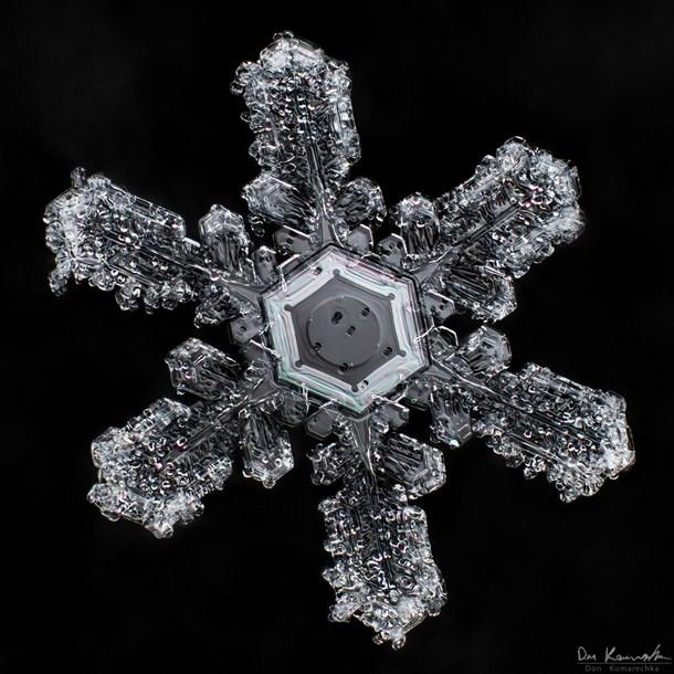 snowflake_photography