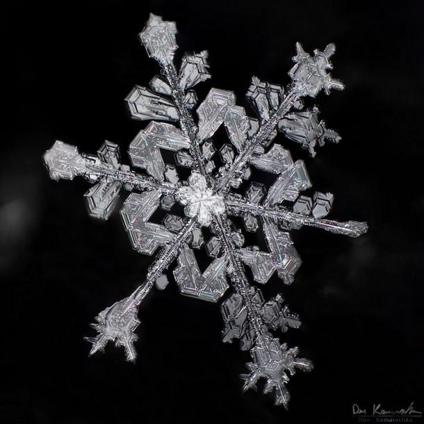 Fotografías de las misteriosas formas de los copos de nieve