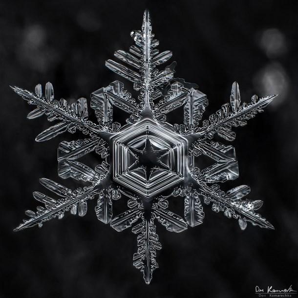 snowflake_photography_snowflake_photos