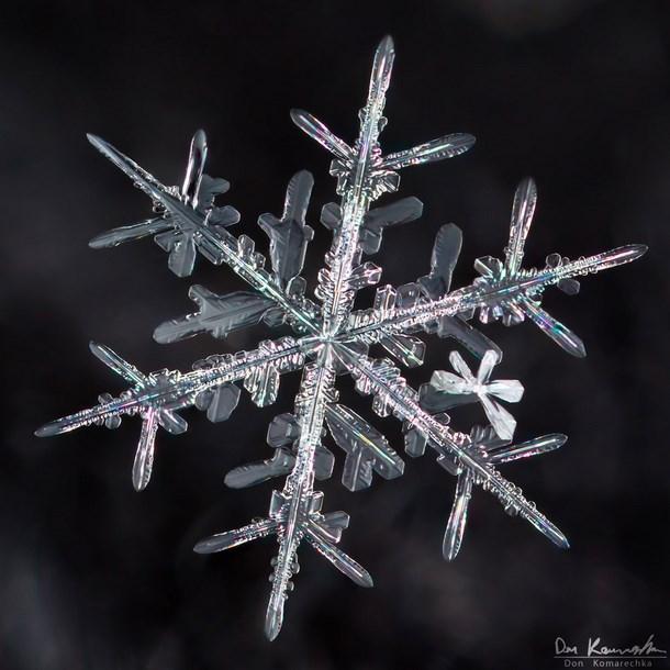 square_snowflake_photography