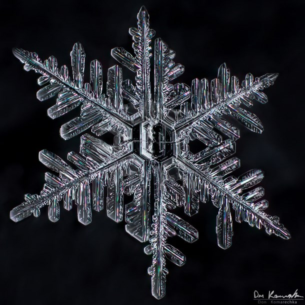 stunning_snowflake_photography