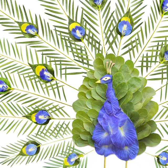 Las Aves Florales de la artista Red Hong Yi