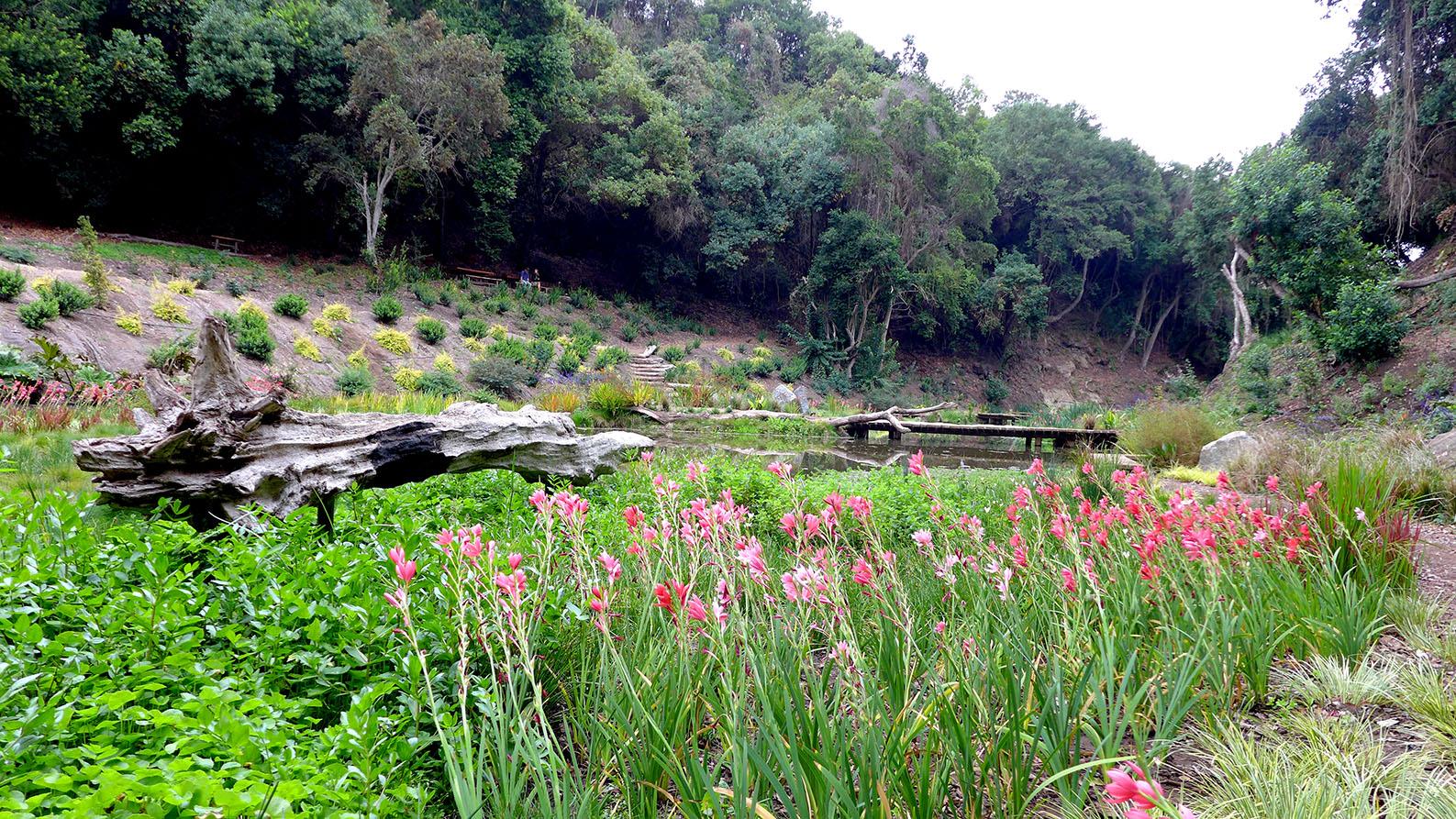 El mágico Jardín Giverny de Monet realizado en Chile dentro del Parque Tricao
