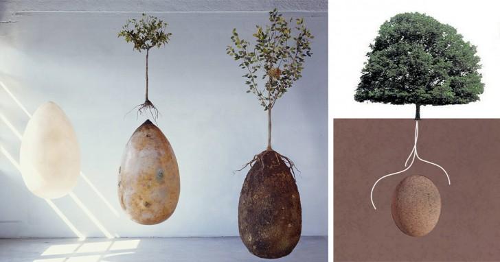 biodegradable-burial-pod-memory-forest-capsula-mundi-fb-728x382