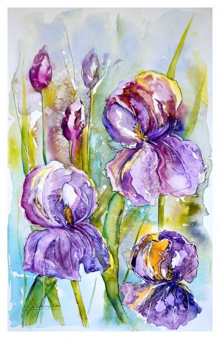 lirios-violeta-m