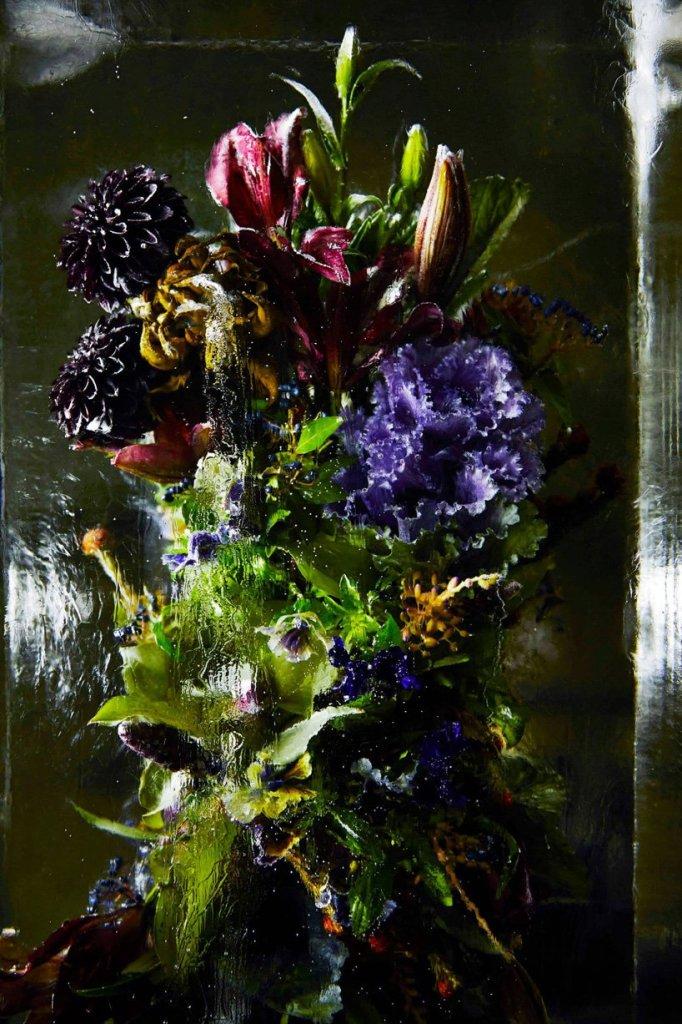Iced Flowers_Azuma Makoto_Cultura Inquieta-7