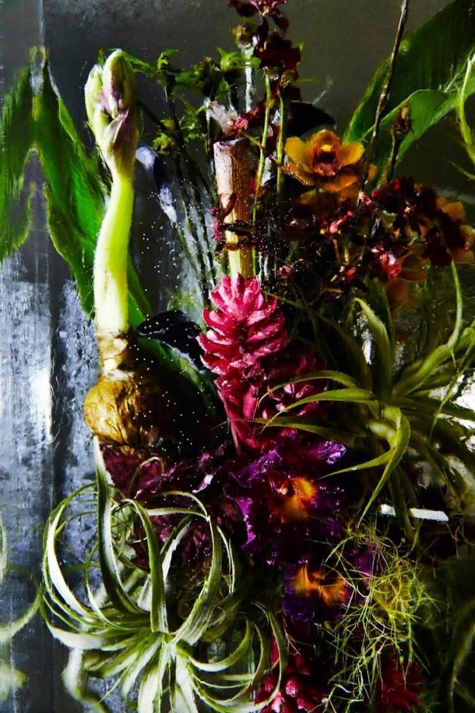 Iced Flowers_Azuma Makoto_Cultura Inquieta-8