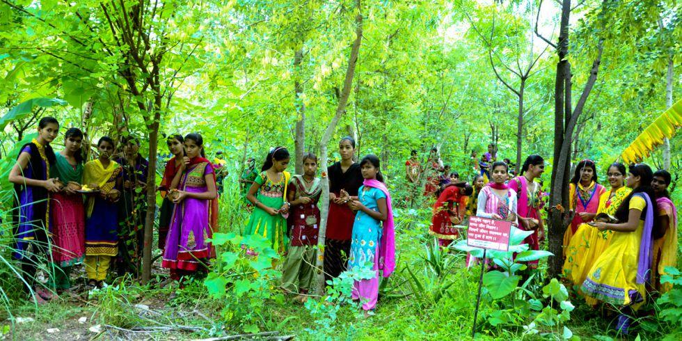 Más de 60 familias se han sumado a la iniciativa para plantar árboles por cada niña que nace.