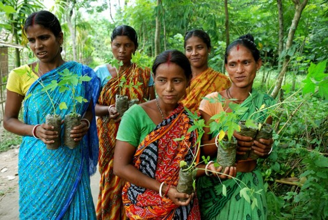 Women-with-saplings-West-Bengal-India.jpg.650x0_q85_crop-smart-638x428
