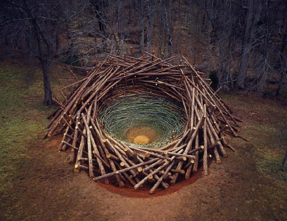 Clemson Clay Nest -- South Carolina's Botanical Garden, 2005