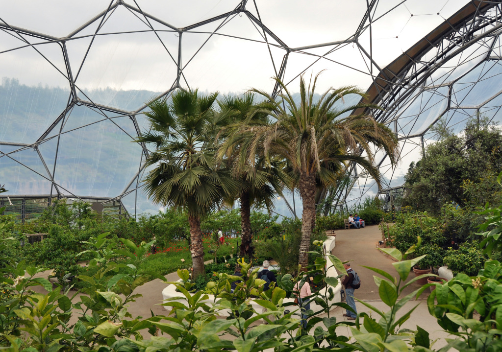 Interior_of_Mediterranean_biome,_Eden_Project