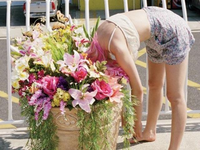 El Poder medicinal de las Flores comestibles