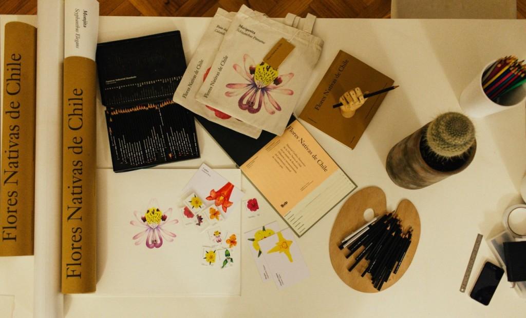 """Ilustraciones de """"Las Flores Nativas Chilenas"""" volviendo a un oficio casi olvidado"""