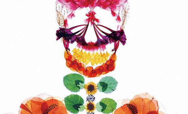 esqueleto-floral-00