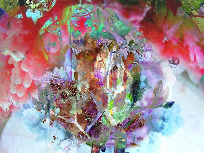 fall garden ellalabella (16)