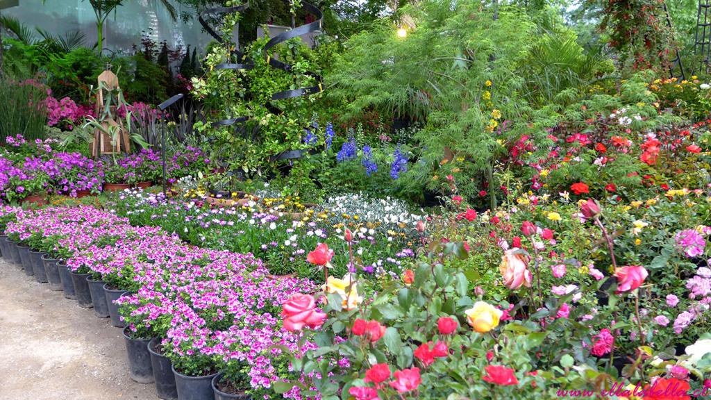 La fiesta de las flores y el jard n en feria jardinera for La jardin 2015