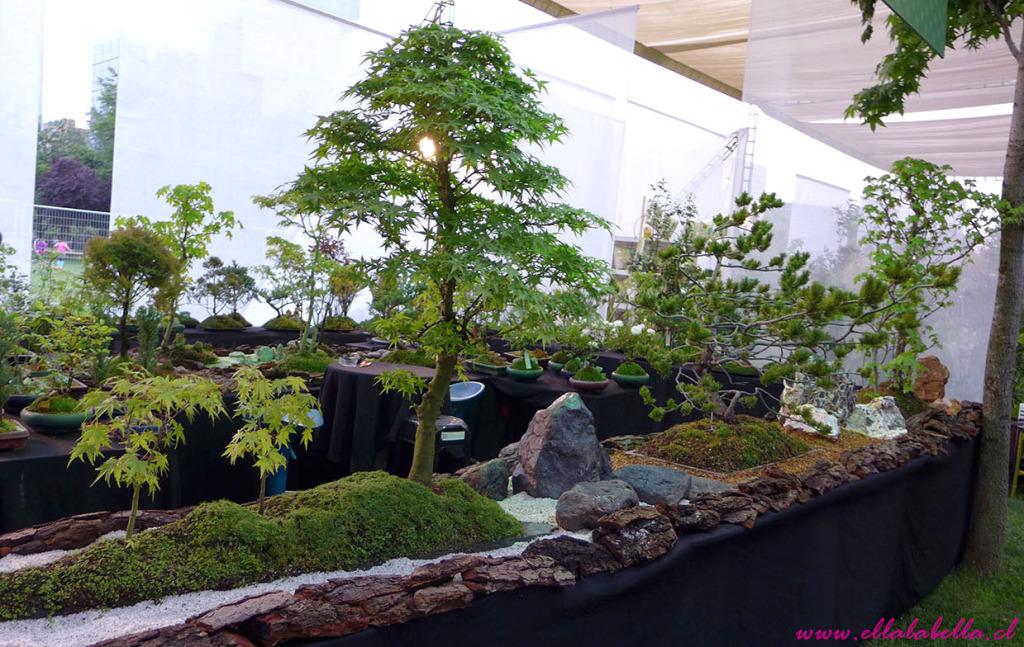 feria jardinera 2015 ellalabella (9)