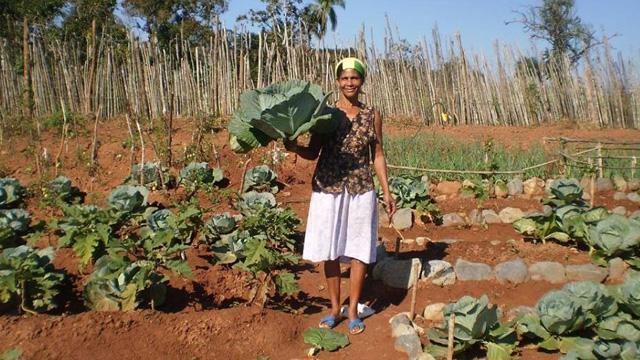 Agricultoras-familiares-son-claves-para-el-desarrollo-territorial-y-la-lucha-contra-el-hambre-en-America-Latina-y-el-Caribe