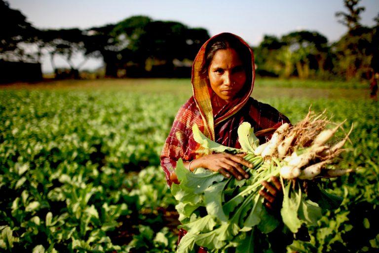 Las Mujeres agrícolas y su voz por el Mundo
