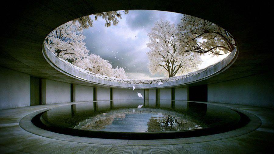 Naoshima, la Isla del Arte Contemporáneo