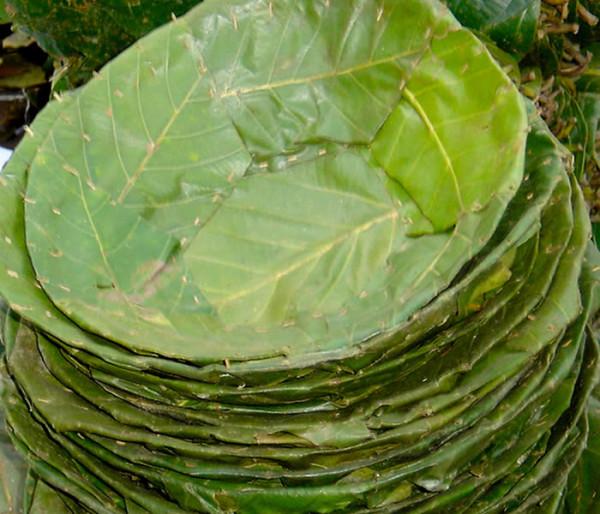 platos-vegetales-08-600x514