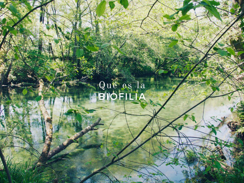 ¿Que es la Biofilia?
