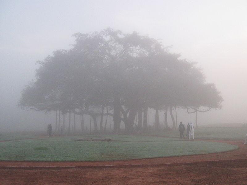 800px-Tamil_Auroville