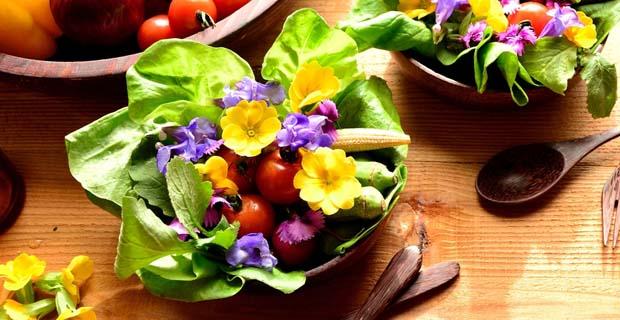 flores comestibles (1)