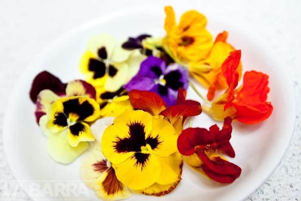 flores comestibles (4)