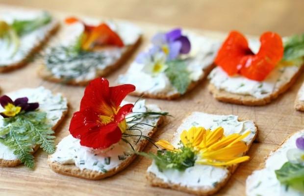 flores comestibles (8)