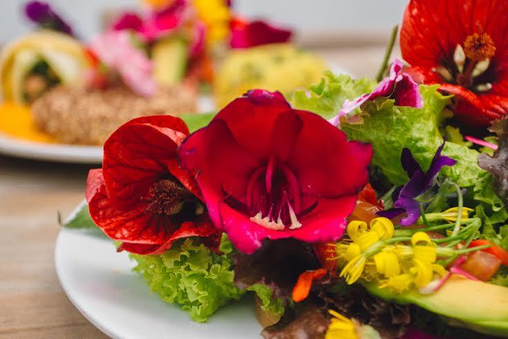 plato-con-flores-comestibles-saludpan-medellin-ciudad-inteligente