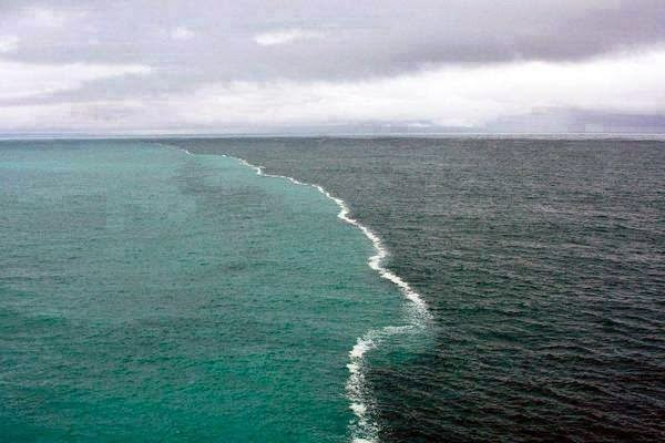 The-Gulf-of-Alaska-where-two-oceans-meet-but-do-not-mix