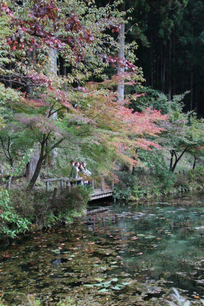 paisaje-japon